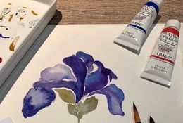 Beginners to Advanced in Watercolour
